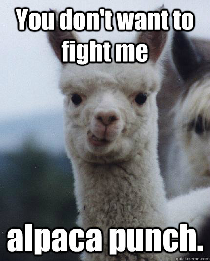 You don't want to fight me alpaca punch.