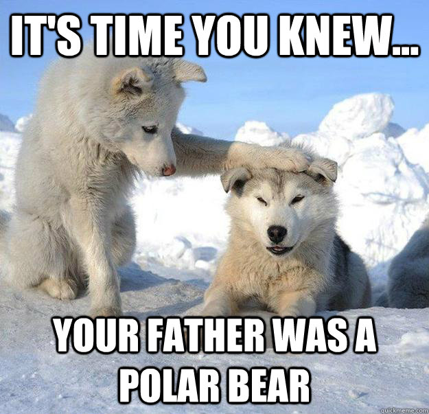 It's time you knew... Your father was a polar bear