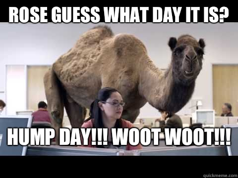 Rose guess what day it is? HUMP DAY!!! WOOT WOOT!!!