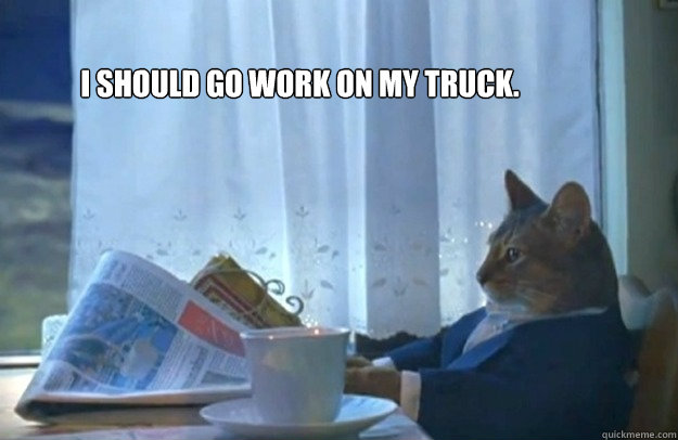 I should go work on my truck. - I should go work on my truck.  Sophisticated Cat