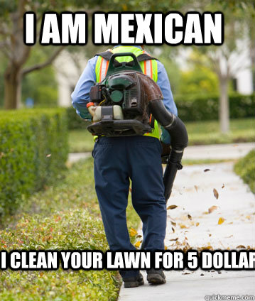 I am mexican I clean your lawn for 5 dollar
