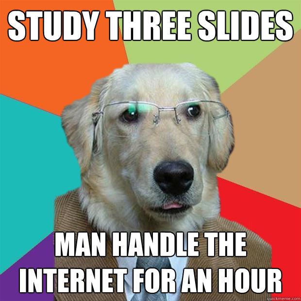 Study Three Slides Man handle the internet for an hour - Study Three Slides Man handle the internet for an hour  Business Dog