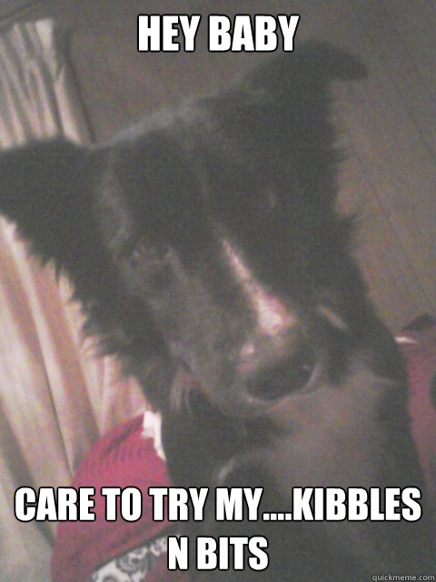 Hey baby Care to try my....Kibbles n Bits