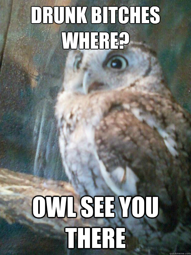 1a633c1db3f2ca4737119b90687ec3461480fde33a89b1f460dd0a3ccb1726b3 drunk bitches where? owl see you there pun party owl quickmeme,Depressed Drunk Meme