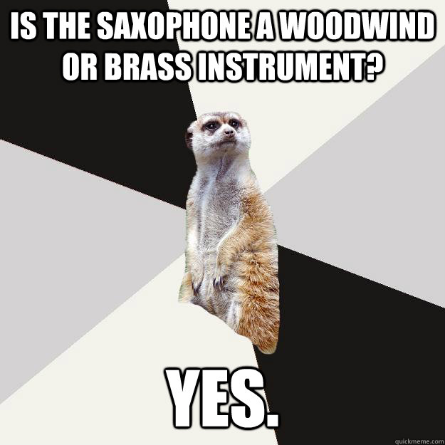 Is the saxophone a woodwind or brass instrument? yes.