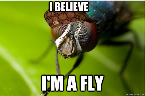 I BELIEVE  I'M A FLY - I BELIEVE  I'M A FLY  Scumbag Fly