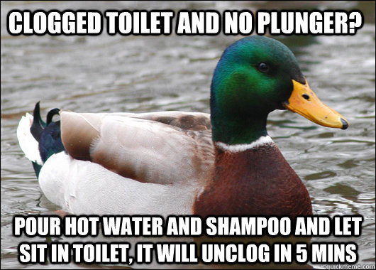 Clogged toilet and no plunger? Pour hot water and shampoo and let sit in toilet, it will unclog in 5 mins - Clogged toilet and no plunger? Pour hot water and shampoo and let sit in toilet, it will unclog in 5 mins  Actual Advice Mallard