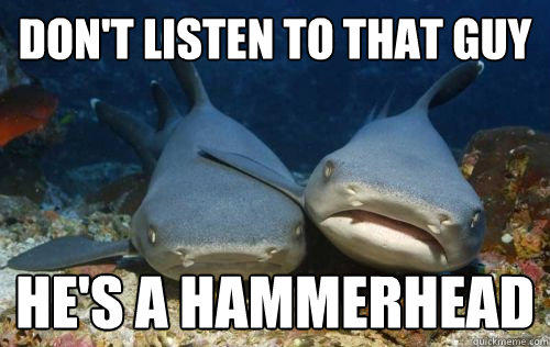 Don't listen to that guy He's a hammerhead  Compassionate Shark Friend
