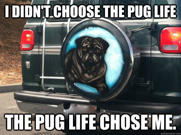I didn't choose the pug life the pug life chose me. - I didn't choose the pug life the pug life chose me.  pug lyfe