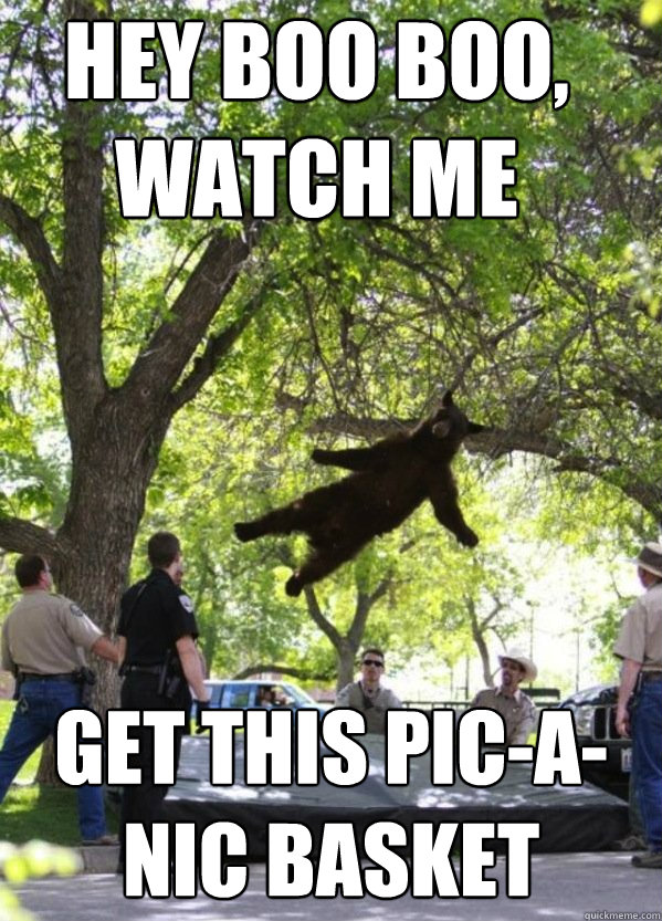 Hey Boo Boo, watch me get this pic-a-nic basket  i am a falling bear
