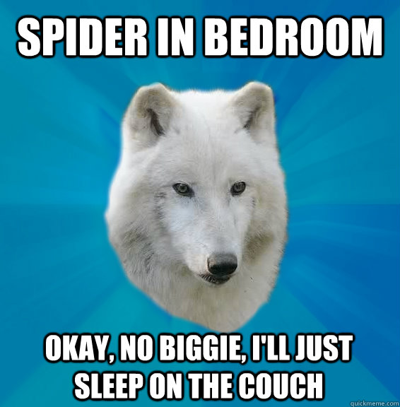 spider in bedroom okay, no biggie, I'll just sleep on the couch