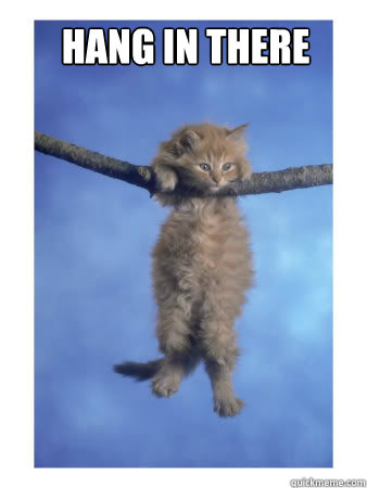 Hang in there     Hang In There Kitty