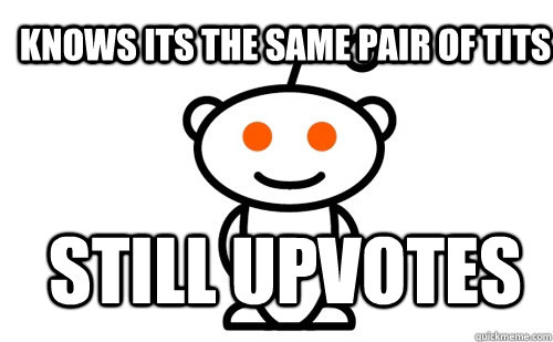 Knows its the same pair of tits Still upvotes - Knows its the same pair of tits Still upvotes  Good Guy Reddit