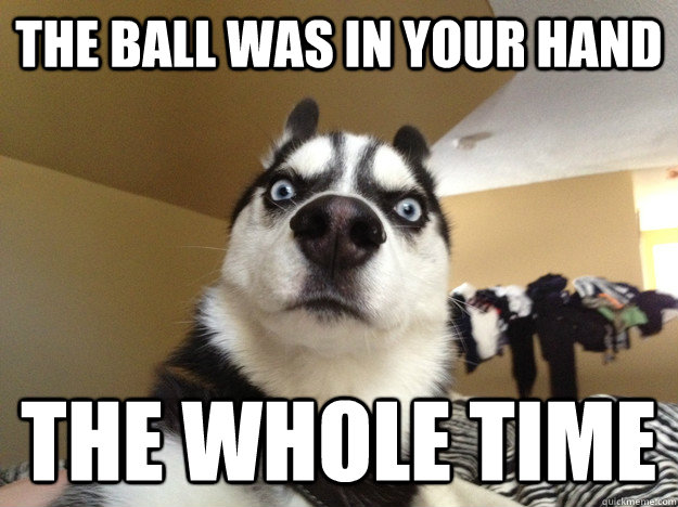 The ball was in your hand the whole time - The ball was in your hand the whole time  Realization Dog