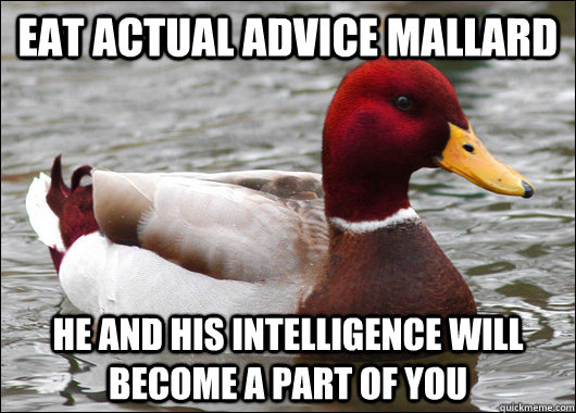 Eat actual advice mallard He and his intelligence will become a part of you - Eat actual advice mallard He and his intelligence will become a part of you  Malicious Advice Mallard