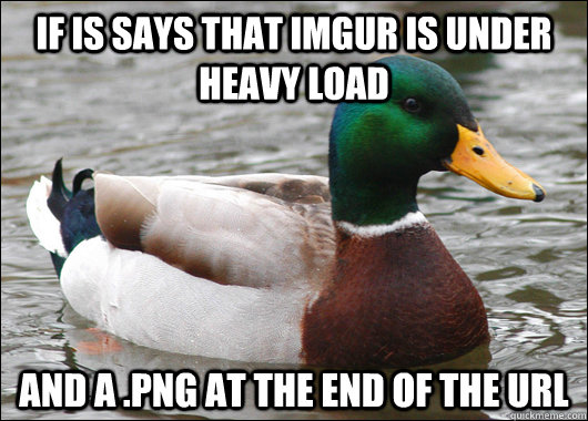 If is says that Imgur is under heavy load and a .png at the end of the url - If is says that Imgur is under heavy load and a .png at the end of the url  Actual Advice Mallard