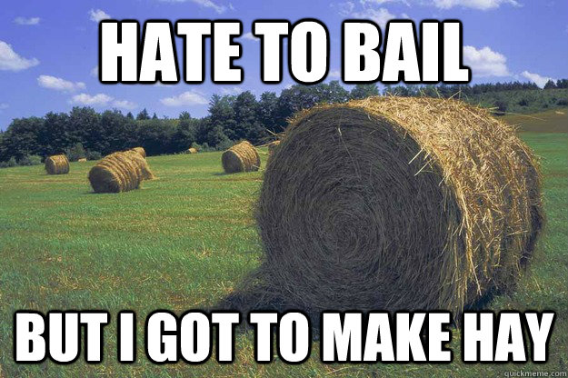 HATE TO BAIL BUT I GOT TO MAKE HAY  bail hay pun meme