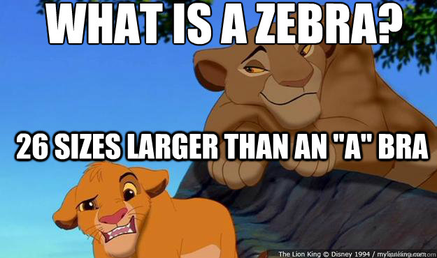 What is a zebra?  26 sizes larger than an