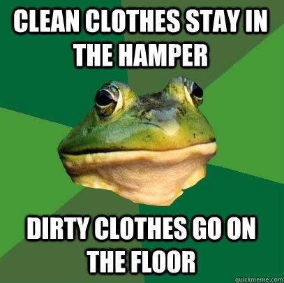 Clean clothes stay in the hamper Dirty clothes go on the floor - Clean clothes stay in the hamper Dirty clothes go on the floor  Foul Bachelor Frog