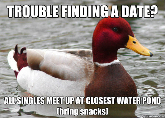 TROUBLE FINDING A DATE? ALL SINGLES MEET UP AT CLOSEST WATER POND (bring snacks) - TROUBLE FINDING A DATE? ALL SINGLES MEET UP AT CLOSEST WATER POND (bring snacks)  Malicious Advice Mallard