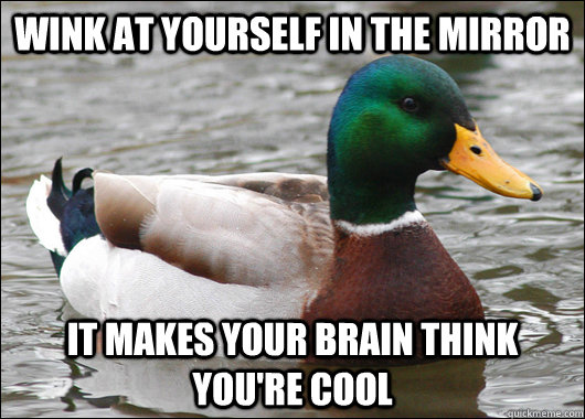 Wink at yourself in the mirror It makes your brain think you're cool - Wink at yourself in the mirror It makes your brain think you're cool  Actual Advice Mallard
