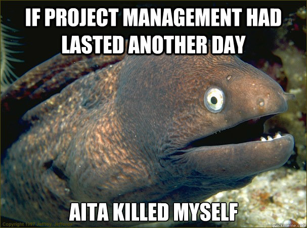 If project management had lasted another day Aita killed myself  Bad Joke Eel