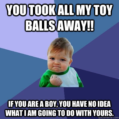 You took all my toy balls away!! If you are a boy, you have no idea what I am going to do with yours. - You took all my toy balls away!! If you are a boy, you have no idea what I am going to do with yours.  Success Kid