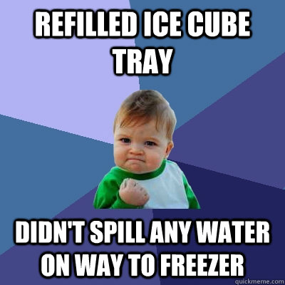refilled ice cube tray didn't spill any water on way to freezer - refilled ice cube tray didn't spill any water on way to freezer  Success Kid