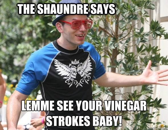 THE SHAUNDRE SAYS LEMME SEE YOUR VINEGAR STROKES BABY!