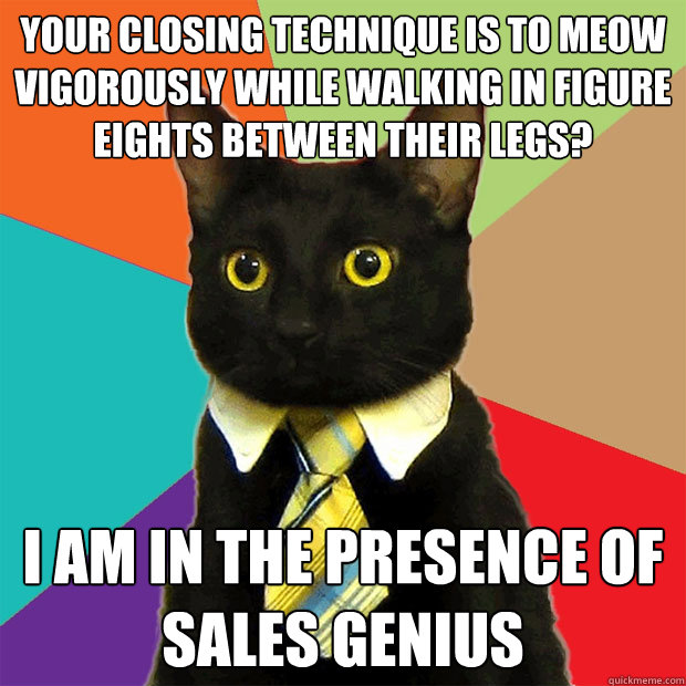 your closing technique is to meow vigorously while walking in figure eights between their legs? I am in the presence of sales genius - your closing technique is to meow vigorously while walking in figure eights between their legs? I am in the presence of sales genius  Business Cat