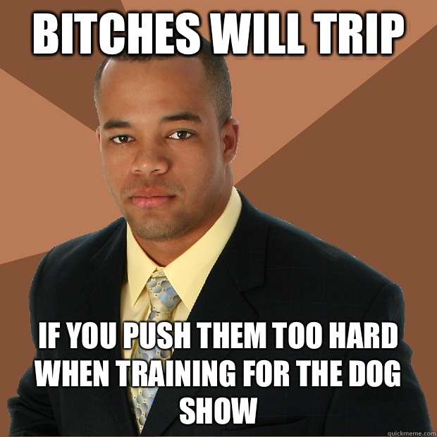 Bitches will trip If you push them too hard when training for the dog show - Bitches will trip If you push them too hard when training for the dog show  Successful Black Man