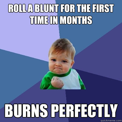 roll a blunt for the first time in months burns perfectly - roll a blunt for the first time in months burns perfectly  Success Kid