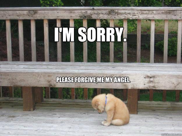 I'm sorry. Please forgive me my Angel.  Sorry