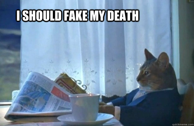 I should fake my death  Sophisticated Cat