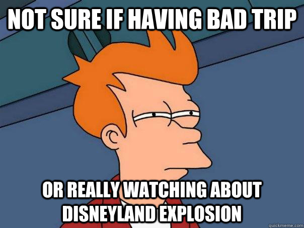Not sure if having bad trip or really watching about disneyland explosion - Not sure if having bad trip or really watching about disneyland explosion  Futurama Fry