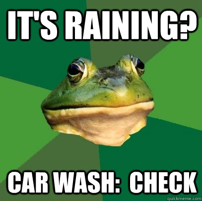 It's raining? Car wash:  CHECK - It's raining? Car wash:  CHECK  Foul Bachelor Frog