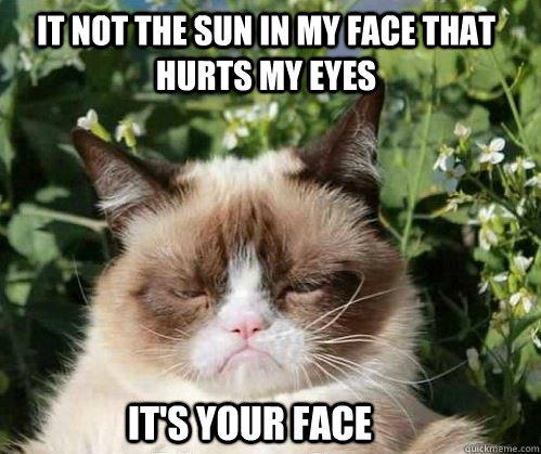 It not the sun in my face that hurts my eyes It's your face   Grumpy Cat