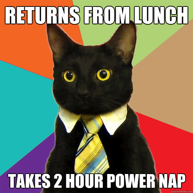 returns from lunch takes 2 hour power nap - returns from lunch takes 2 hour power nap  Business Cat