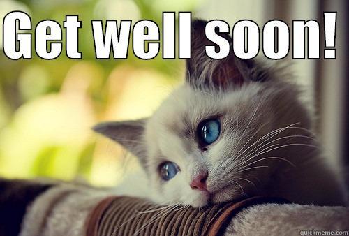 Get Well Soon Cat | www.pixshark.com - Images Galleries ...