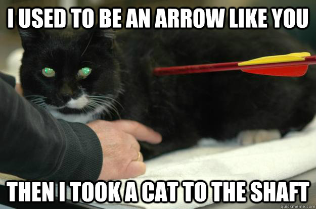 I used to be an arrow like you Then I took a Cat to the shaft  Worlds Toughest Cat