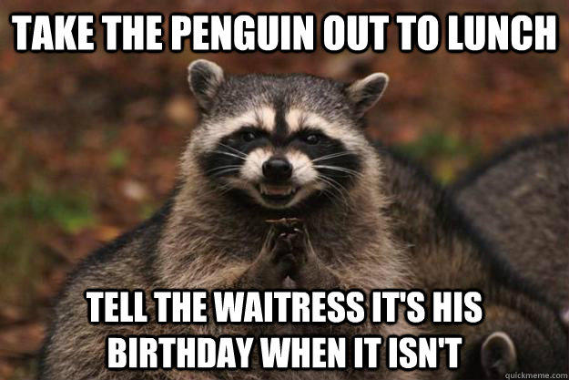 take the penguin out to lunch tell the waitress it's his birthday when it isn't  - take the penguin out to lunch tell the waitress it's his birthday when it isn't   Evil Plotting Raccoon