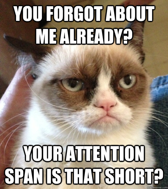 you forgot about me already? your attention span is that short?