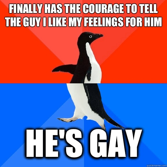 Finally has the courage to tell the guy I like my feelings for him He's gay - Finally has the courage to tell the guy I like my feelings for him He's gay  Socially Awesome Awkward Penguin