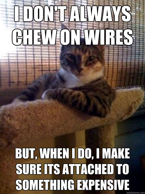 I don\'t always chew on wires But, when I do, I make sure its ...