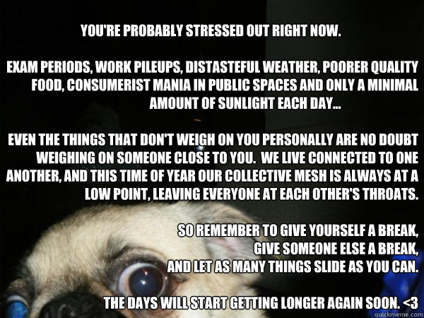 You're probably stressed out right now.                              œ  Exam periods, work pileups, distasteful weather, poorer quality food, consumerist mania in public spaces and only a minimal amount of sunlight each day...                         - You're probably stressed out right now.                              œ  Exam periods, work pileups, distasteful weather, poorer quality food, consumerist mania in public spaces and only a minimal amount of sunlight each day...                          chillaxsad