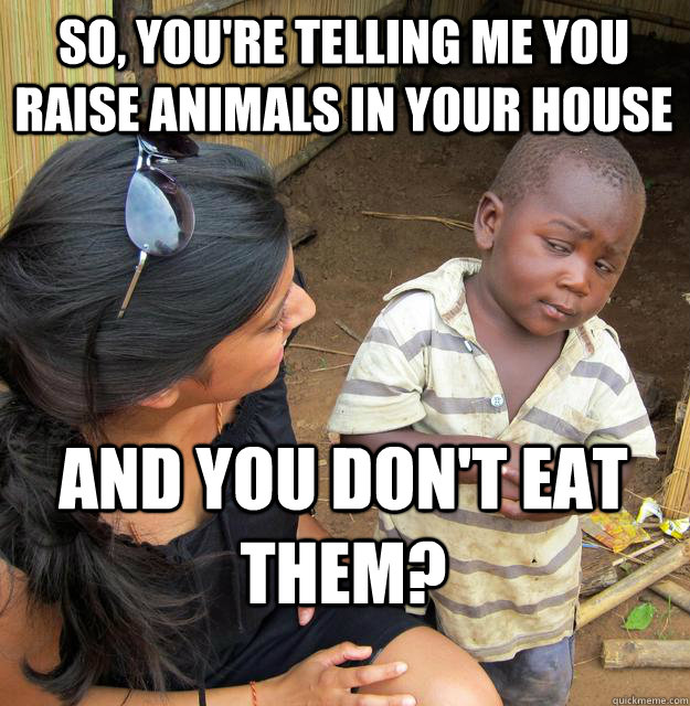 So, you're telling me you raise animals in your house and you don't eat them?