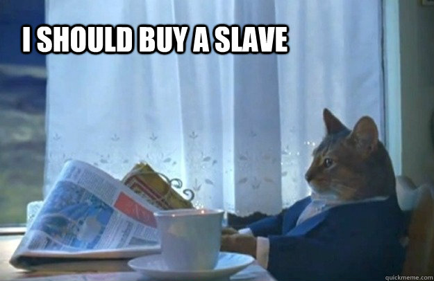 i should buy a slave - i should buy a slave  Sophisticated Cat