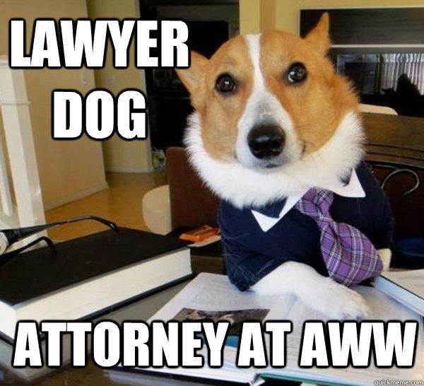 Lawyer Dog Attorney at aww