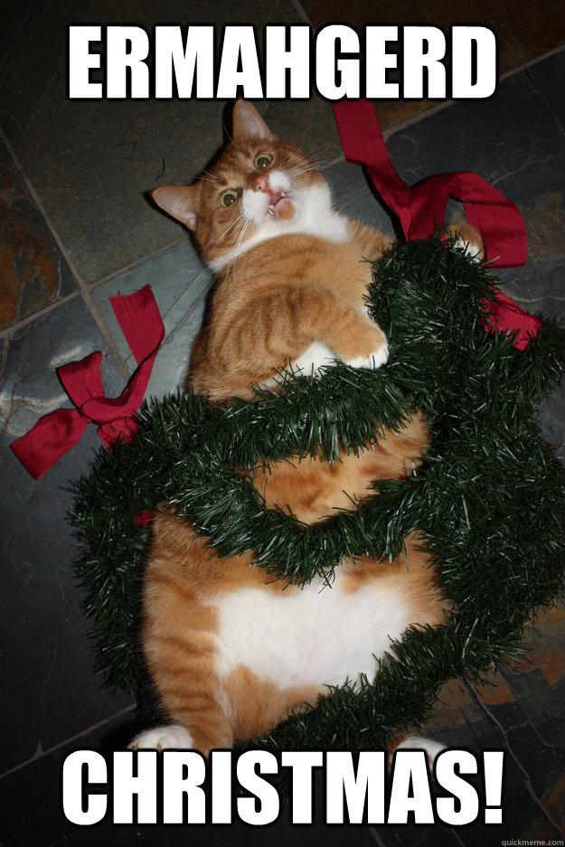 Ermahgerd christmas! - Misc - quickmeme