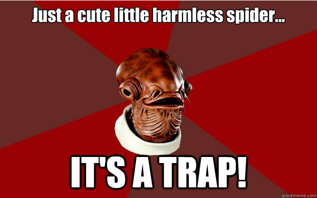 Just a cute little harmless spider... IT'S A TRAP!